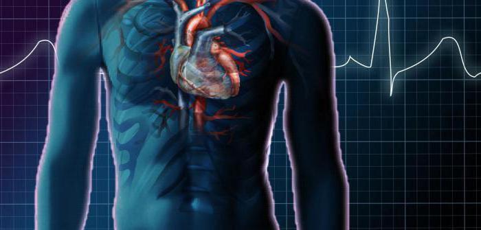 гемодинамические артериальные гипертензии причины клиника диагностика