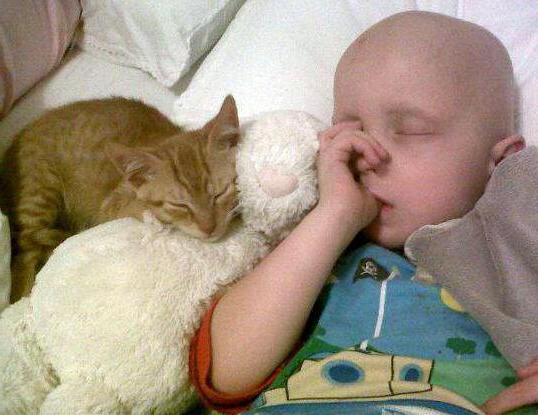 рабдомиосаркома альвеолярная у детей