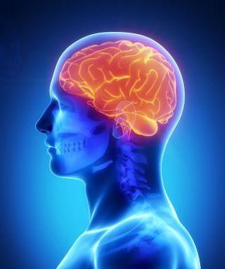 гипотензивная энцефалопатия что это такое