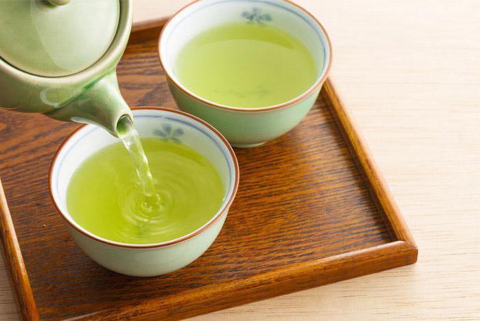 зеленый чай при гастрите с пониженной кислотностью