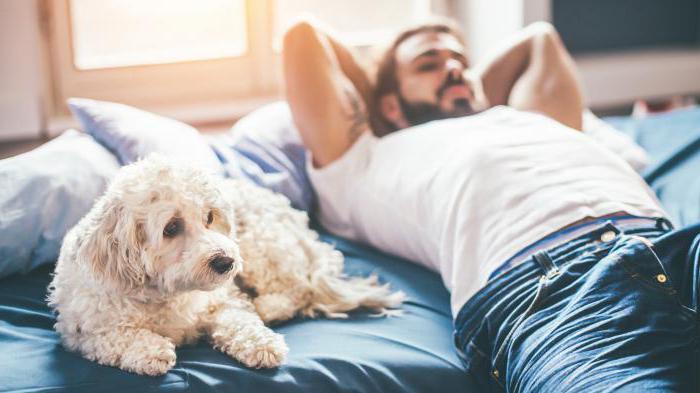 бывает ли бактериальный вагиноз у мужчин
