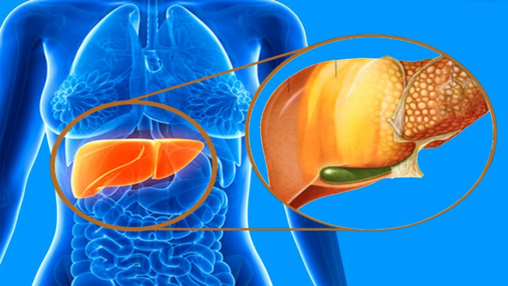 Жировой гепатоз код по мкб 10