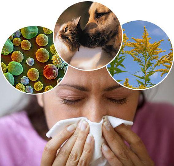 меню при атопическом дерматите у детей меню