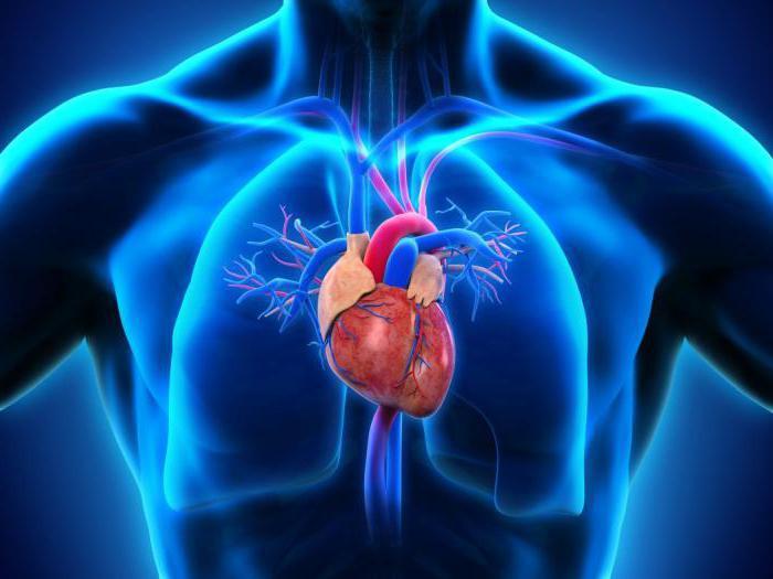 анализ осложнений артериальной гипертензии