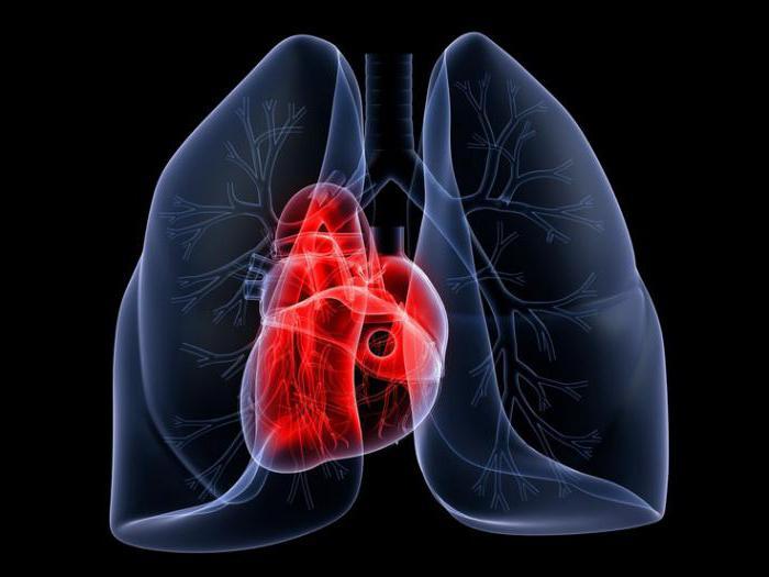 синдром артериальной гипертензии патогенез