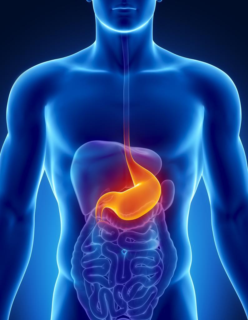 заболевания жкт симптомы и лечение болезней