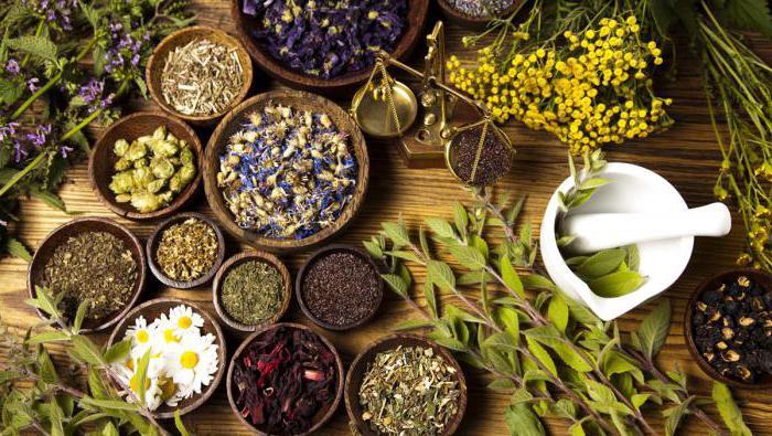 мед при гастрите с повышенной кислотностью отзывы