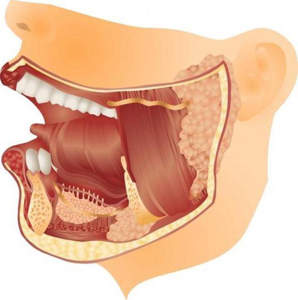ревматоидный артрит внчс