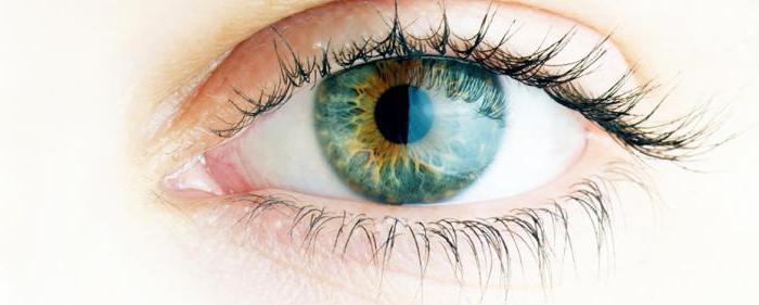 ангиопатия глаз