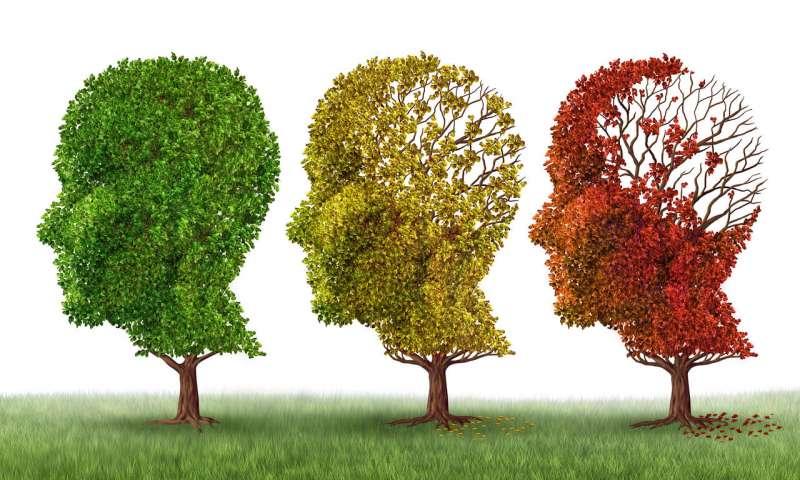 Проявление Альцгеймера