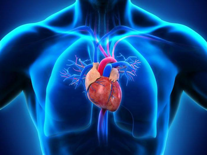 дифференциальная диагностика артериальной гипертензии