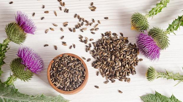 Как принимать семена расторопши