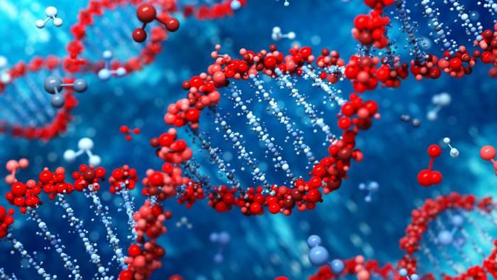Цепи ДНК
