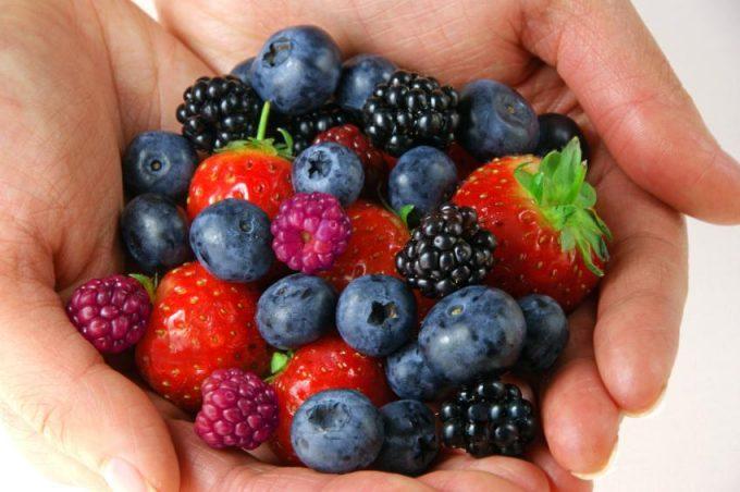 ягоды в ладонях