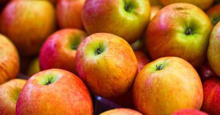 при гастрите яблоки